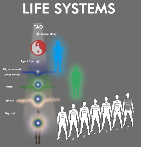 download Treatment of Autoimmune