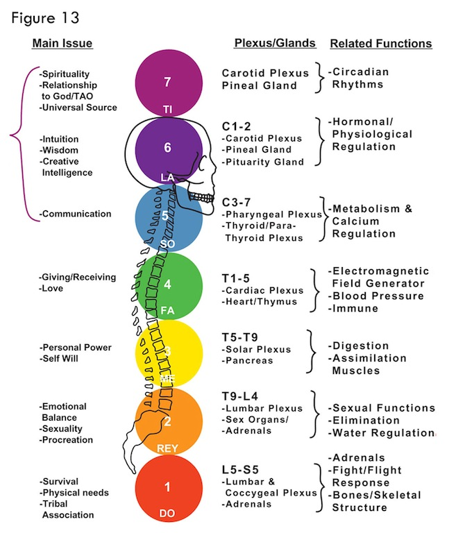 Chakra Correspondence chakra diagram body data wiring diagram blog