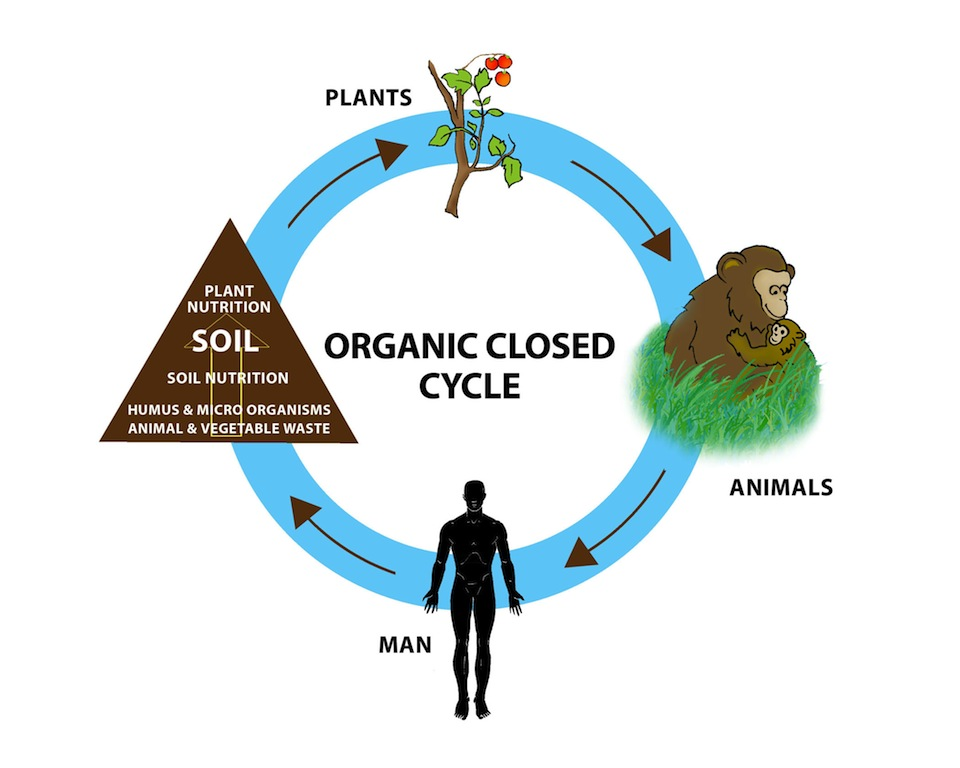 what is organics part 1 dr diet and organic farming