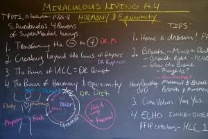 Miraculous Living Pt 4 blk bd