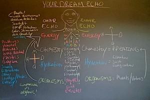 Your Dream ECHO Blk Bd