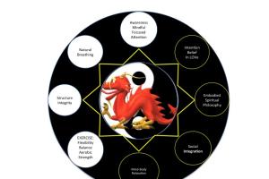 Tai-Chi 8 Aspects