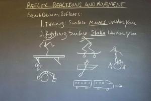 Reflex Reactions