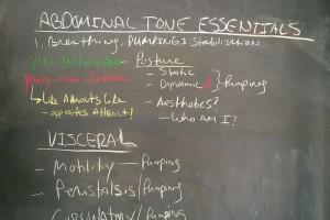 Abdominal Tone Essentials Blk Bd