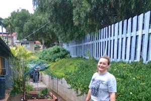 Penny Home Garden 2