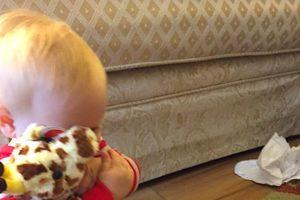 mana-giraffe