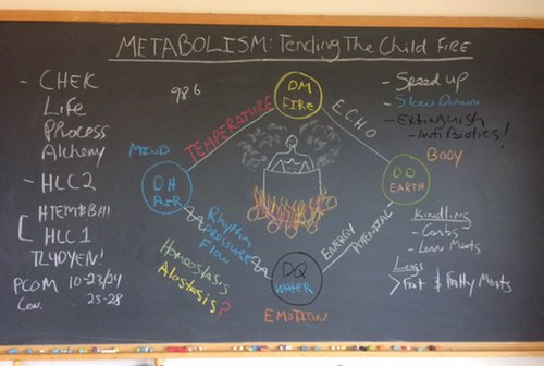 Metabolism: Tending the Child Fire